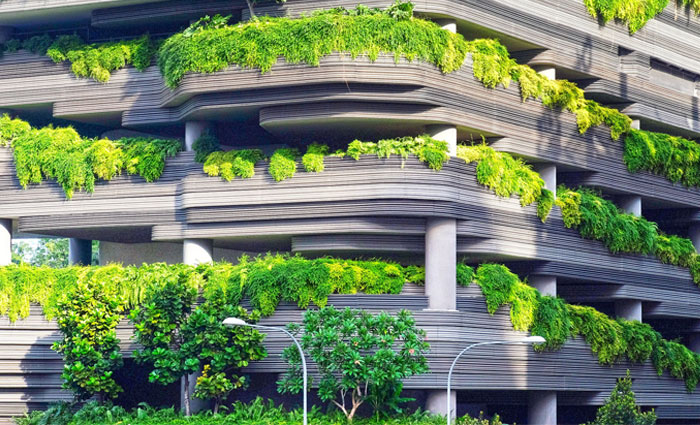 biophilic Design, Green Building